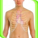 Omega 3 , salud del corazón